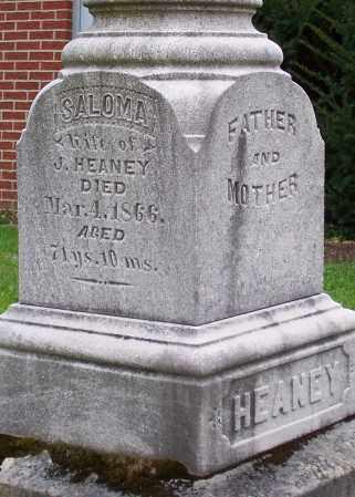 HEANEY, SALOMA - Stark County, Ohio | SALOMA HEANEY - Ohio Gravestone Photos