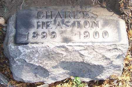 HEASTON, CHARLES - Stark County, Ohio | CHARLES HEASTON - Ohio Gravestone Photos