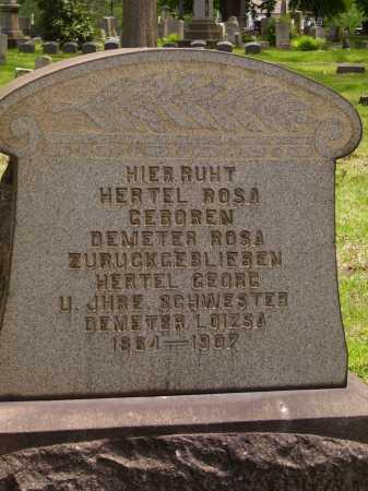 DEMETER HERTEL, ROSA - Stark County, Ohio | ROSA DEMETER HERTEL - Ohio Gravestone Photos