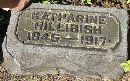 HILLIBISH, KATHARINE - Stark County, Ohio   KATHARINE HILLIBISH - Ohio Gravestone Photos