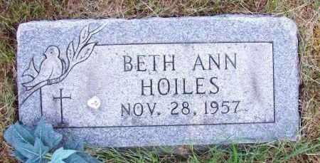 HOILES, BETH ANN - Stark County, Ohio | BETH ANN HOILES - Ohio Gravestone Photos