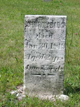 HOLIBAUGH, JOHN - Stark County, Ohio | JOHN HOLIBAUGH - Ohio Gravestone Photos