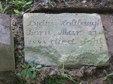 HOLIBAUGH, LYDIA - Stark County, Ohio   LYDIA HOLIBAUGH - Ohio Gravestone Photos
