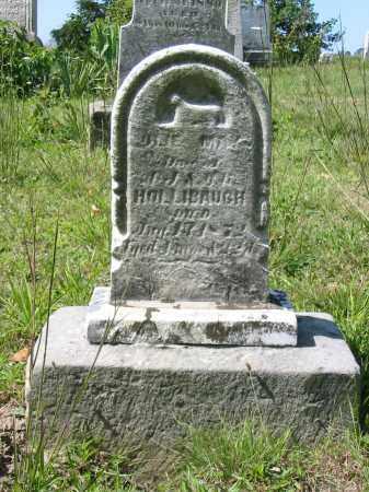 HOLLIBAUGH, JULIE MAY - Stark County, Ohio   JULIE MAY HOLLIBAUGH - Ohio Gravestone Photos