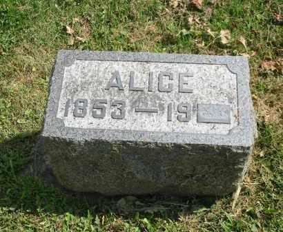SANFORD HOWENSTINE, ALICE - Stark County, Ohio | ALICE SANFORD HOWENSTINE - Ohio Gravestone Photos