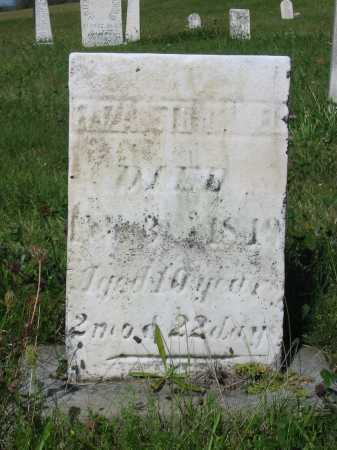 IMMEL, ELIZABETH - Stark County, Ohio | ELIZABETH IMMEL - Ohio Gravestone Photos