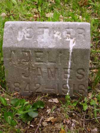 JAMES, ADELIA I. - Stark County, Ohio | ADELIA I. JAMES - Ohio Gravestone Photos