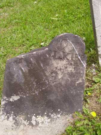 KIRK, ?????? L. - Stark County, Ohio | ?????? L. KIRK - Ohio Gravestone Photos