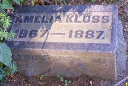 KLOSS, AMELIA - Stark County, Ohio   AMELIA KLOSS - Ohio Gravestone Photos