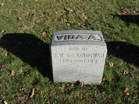 LANDOWER, VIDA A. - Stark County, Ohio | VIDA A. LANDOWER - Ohio Gravestone Photos