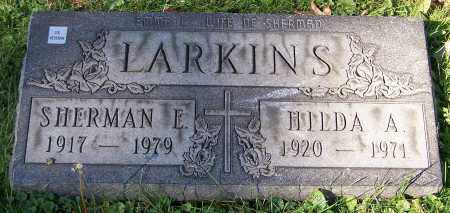 LARKINS, HILDA A. - Stark County, Ohio | HILDA A. LARKINS - Ohio Gravestone Photos