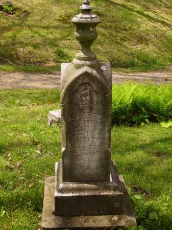 LEWIS, ELIZABETH - Stark County, Ohio   ELIZABETH LEWIS - Ohio Gravestone Photos