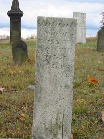 LOWER, INFANT SON - Stark County, Ohio   INFANT SON LOWER - Ohio Gravestone Photos