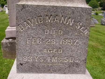 MANN, DAVID MANN, SR. - Stark County, Ohio   DAVID MANN, SR. MANN - Ohio Gravestone Photos