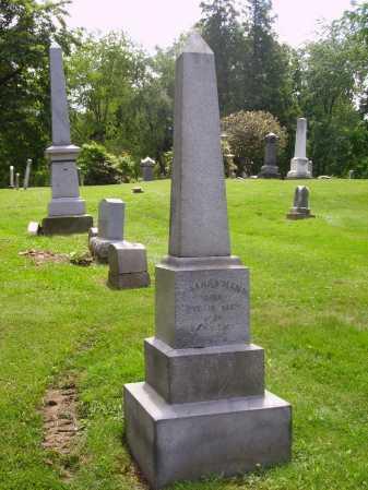 MANN, MOUNMENT - Stark County, Ohio | MOUNMENT MANN - Ohio Gravestone Photos