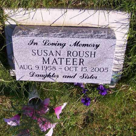MATEER, SUSAN ROUSH - Stark County, Ohio | SUSAN ROUSH MATEER - Ohio Gravestone Photos