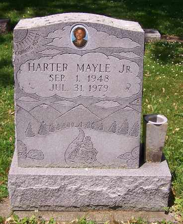 MAYLE, HARTER  (JR) - Stark County, Ohio   HARTER  (JR) MAYLE - Ohio Gravestone Photos