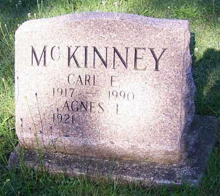 MCKINNEY, AGNES L. - Stark County, Ohio | AGNES L. MCKINNEY - Ohio Gravestone Photos