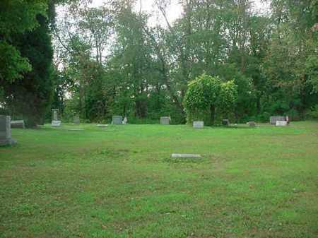 SHELINE MCNUTT, MINERVA - Stark County, Ohio | MINERVA SHELINE MCNUTT - Ohio Gravestone Photos