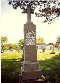 VIOLAND MENEGAY, ROSINE - Stark County, Ohio | ROSINE VIOLAND MENEGAY - Ohio Gravestone Photos