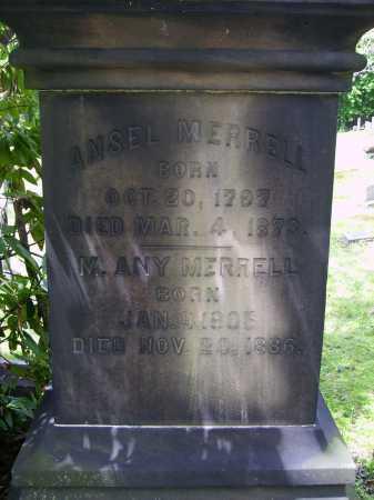 MERRELL, M. ANY - Stark County, Ohio | M. ANY MERRELL - Ohio Gravestone Photos