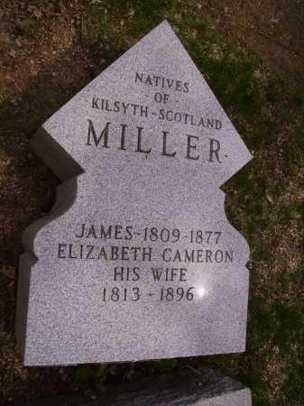 CAMERON MILLER, ELIZABETH - Stark County, Ohio | ELIZABETH CAMERON MILLER - Ohio Gravestone Photos
