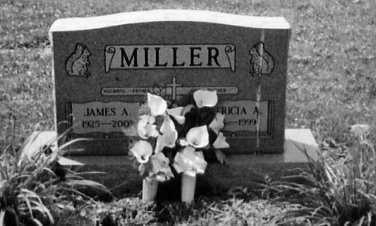 MILLER, PATRICIA A. - Stark County, Ohio | PATRICIA A. MILLER - Ohio Gravestone Photos