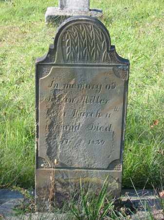MILLER, SUSAN - Stark County, Ohio | SUSAN MILLER - Ohio Gravestone Photos