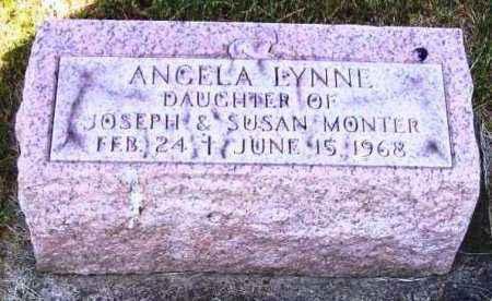 MONTER, ANGELA LYNNE - Stark County, Ohio | ANGELA LYNNE MONTER - Ohio Gravestone Photos