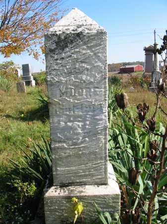 MOORE, LOUISA H - Stark County, Ohio   LOUISA H MOORE - Ohio Gravestone Photos