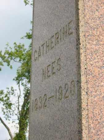 NEES, CATHERINE - Stark County, Ohio | CATHERINE NEES - Ohio Gravestone Photos
