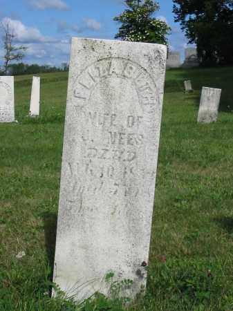 NEES, ELIZABETH - Stark County, Ohio | ELIZABETH NEES - Ohio Gravestone Photos