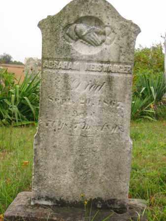 NEISWANGER, ABRAHAM - Stark County, Ohio | ABRAHAM NEISWANGER - Ohio Gravestone Photos