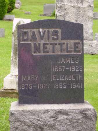 MORRISON NETTLE, ELIZABETH - Stark County, Ohio | ELIZABETH MORRISON NETTLE - Ohio Gravestone Photos