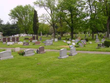NEWMAN CEMETERY, #2 OVERALL VIEW - Stark County, Ohio | #2 OVERALL VIEW NEWMAN CEMETERY - Ohio Gravestone Photos