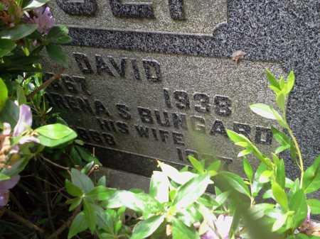 NOLT, DAVID - Stark County, Ohio | DAVID NOLT - Ohio Gravestone Photos