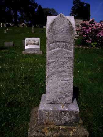 PALMER, MARY - MONUMENT - Stark County, Ohio   MARY - MONUMENT PALMER - Ohio Gravestone Photos