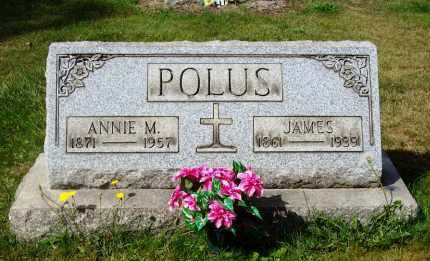 POLUS, ANNIE M. - Stark County, Ohio | ANNIE M. POLUS - Ohio Gravestone Photos