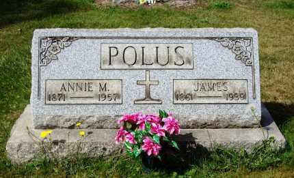 BUCKEL POLUS, ANNIE M. - Stark County, Ohio | ANNIE M. BUCKEL POLUS - Ohio Gravestone Photos