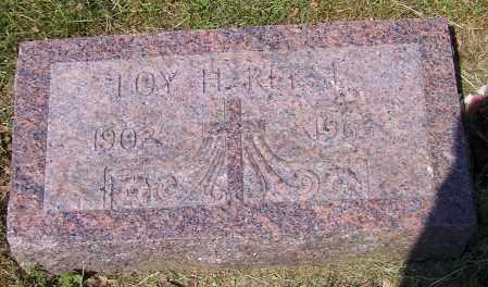 REESE, JOY H. - Stark County, Ohio | JOY H. REESE - Ohio Gravestone Photos