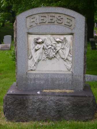 REESE, WILLIAM D. - MONUMENT - Stark County, Ohio | WILLIAM D. - MONUMENT REESE - Ohio Gravestone Photos