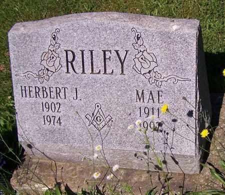 RILEY, MAE - Stark County, Ohio | MAE RILEY - Ohio Gravestone Photos