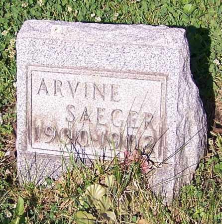 SAEGER, ARVINE - Stark County, Ohio | ARVINE SAEGER - Ohio Gravestone Photos