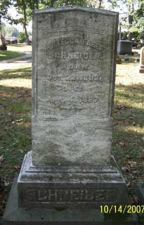 SCHNEIDER, REBECCA FABER - Stark County, Ohio | REBECCA FABER SCHNEIDER - Ohio Gravestone Photos