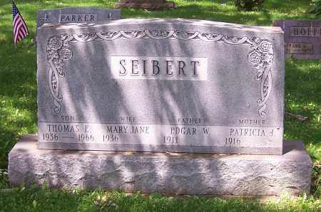 SEIBERT, PATRICIA J. - Stark County, Ohio | PATRICIA J. SEIBERT - Ohio Gravestone Photos