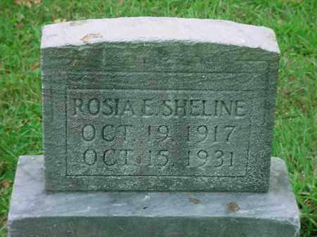 SHELINE, ROSIA E - Stark County, Ohio   ROSIA E SHELINE - Ohio Gravestone Photos