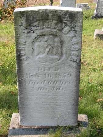 SHELLENBARGER, JOHN - Stark County, Ohio | JOHN SHELLENBARGER - Ohio Gravestone Photos