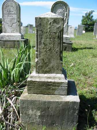 SHOLLENBERGER, RALPH - Stark County, Ohio | RALPH SHOLLENBERGER - Ohio Gravestone Photos