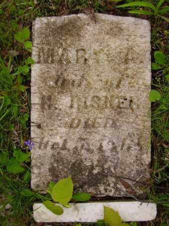 ??SNER, MARY A. - Stark County, Ohio | MARY A. ??SNER - Ohio Gravestone Photos