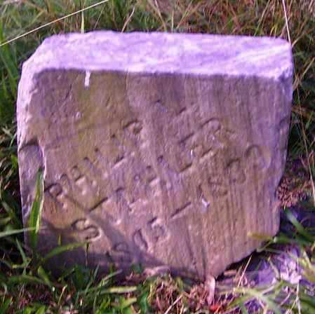STAHLER, PHILLIP - Stark County, Ohio | PHILLIP STAHLER - Ohio Gravestone Photos
